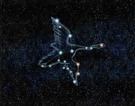CG, Cygnus