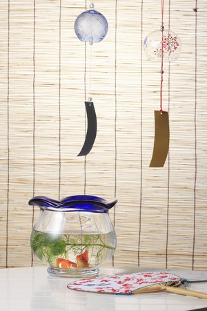 fishbowl: Blind and fan and a fishbowl