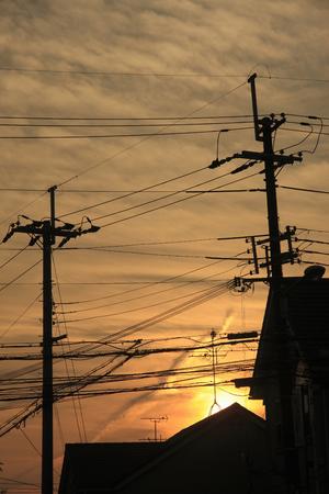 come home: Utility pole