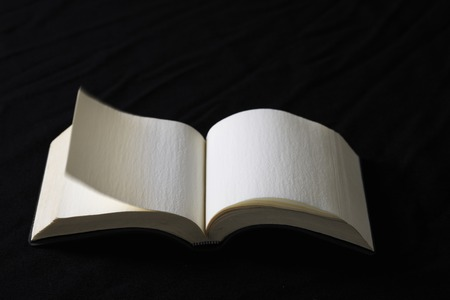 the next life: Turn the page