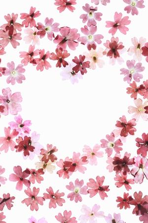 floret: Floret of the pressed flower heart mark