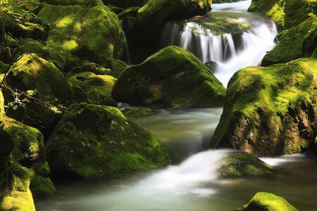 ravine: Akame 48 falls ravine
