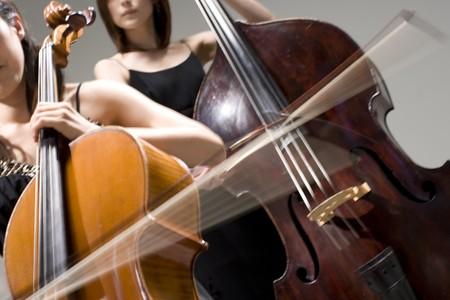 Cello and contrabass photo