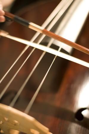 sonata: Contrabass
