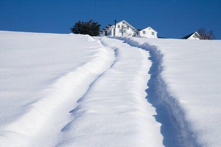 雪のフィールド 写真素材