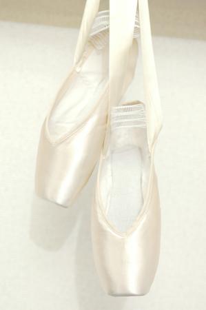 ballet slipper: Ballet slipper