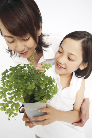 potted: Potted and mother daughter Stock Photo