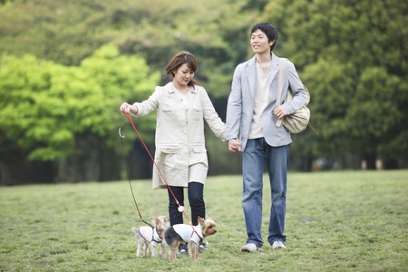 Couple to walk the dog 스톡 콘텐츠