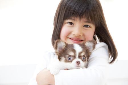 mujer con perro: Una muchacha que sostiene un Chihuahua Foto de archivo