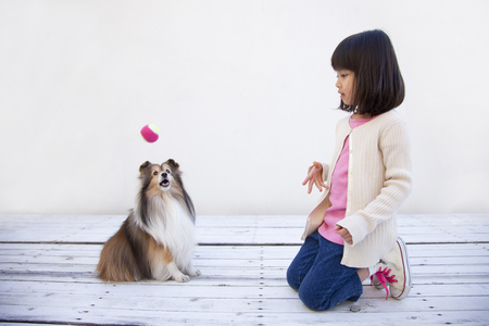 los seres vivos: Girl with a Shetland Sheepdog and the ball