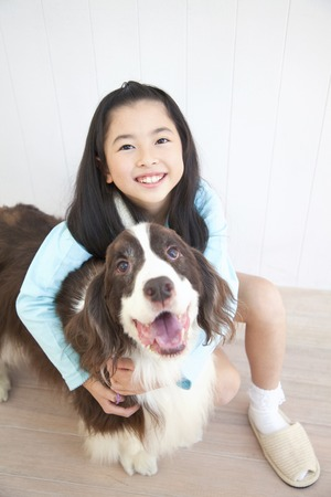 springer spaniel: Girl smile hug in English Springer Spaniel