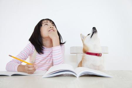 hombre escribiendo: Shiba Inu y niñas a tener en cuenta la respuesta del problema Foto de archivo