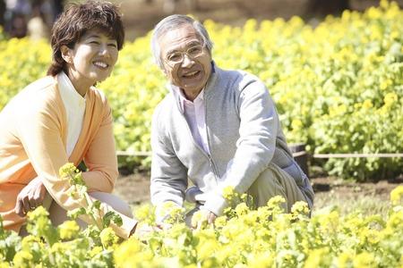 Flower garden and a senior couple Stock Photo