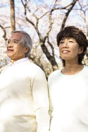 Senior couple to a blossoms photo