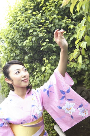 tries: Kimono woman who tries to touch the leaves