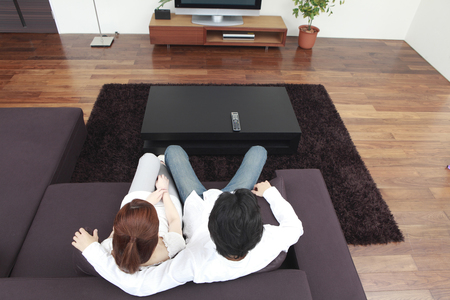 seres vivos: Rear View of a couple to see the TV in the living room