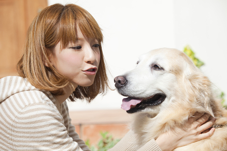 crouch: Woman trying to kiss the Golden Retriever Stock Photo