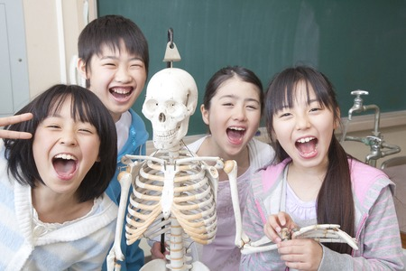 asian model: Elementary school students men and women playing in the skeleton model Stock Photo