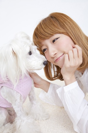 each: Miniature Schnauzer and women each other staring Stock Photo