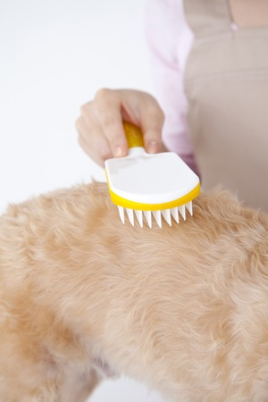 trimmer: Trimmer to brushing the Shunapu