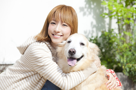 Female golden retriever with a smile 免版税图像