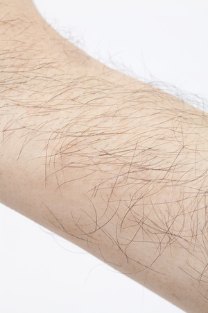 Middle-aged male body hair
