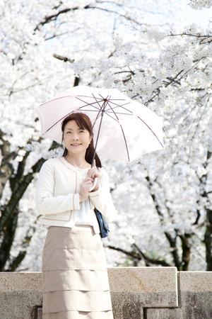 parasol: Senior Ladies parasol
