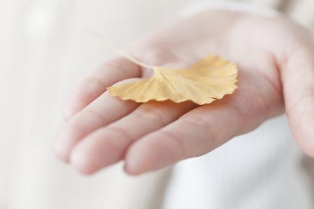 あなたの手の手のひらにイチョウ葉を置く女性