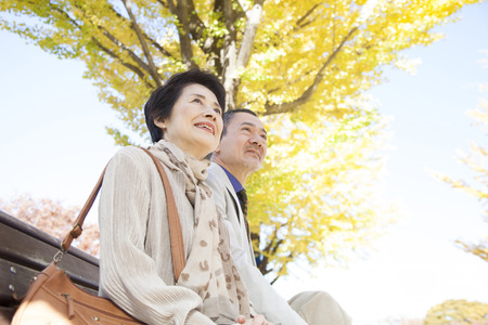 Senior couple smiling in Ginkgo biloba Stock Photo