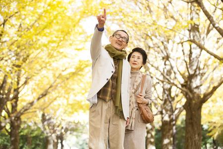 Senior couple to the autumn leaves