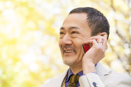 Senior men to call in Ginkgo biloba photo