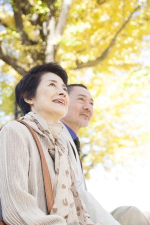 Senior couple smiling in Ginkgo biloba photo
