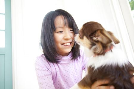 entertain: Girl smile that entertain the Chihuahua