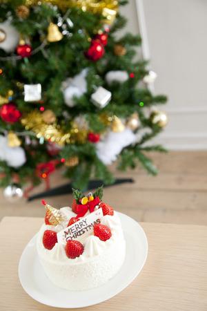 weihnachtskuchen: Weihnachtskuchen und Baum