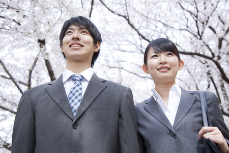 Businessman and OL stare Sakura
