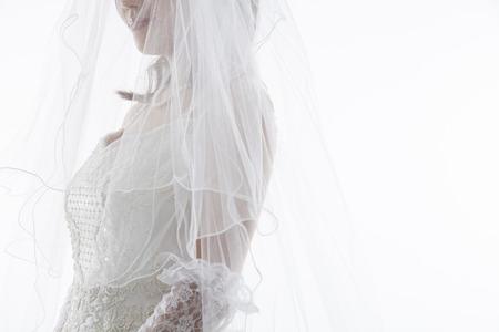 Den Schleier Braut Standard-Bild