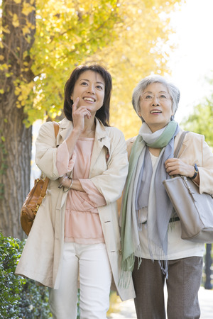Ginkgo treelined walk mother and daughter Stock Photo