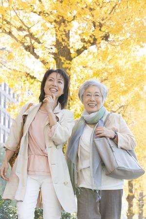 イチョウ treelined 歩く母と娘