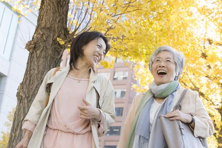 Ginkgo treelined Spaziergang Mutter und Tochter
