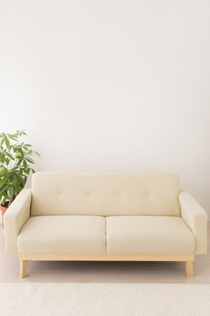 beige: Beige sofa