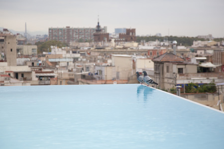 rooftop: Rooftop pool of the hotel Stock Photo