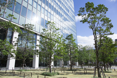 green building: Surrounded by green building