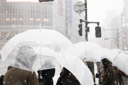 snowing: Its snowing Shibuya scramble crossing Stock Photo