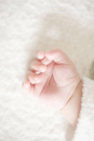 babys: Babys hand