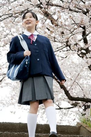 junior high: Junior high school girls that walk under the cherry tree