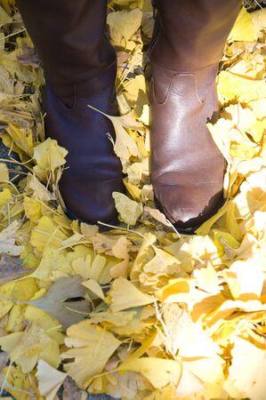 ginkgo leaf: Feet of women who step on the ginkgo leaf Stock Photo