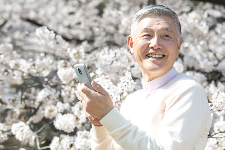 Senior men take Sakura with Smartphone photo