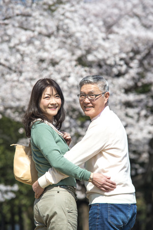 Senior couple walking under the cherry blossoms photo