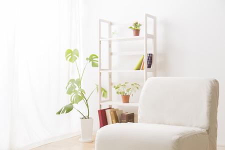 introspection: Shelf