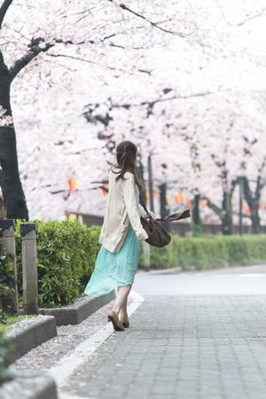 man rear view: Cherry Blossom walking tree man rear view